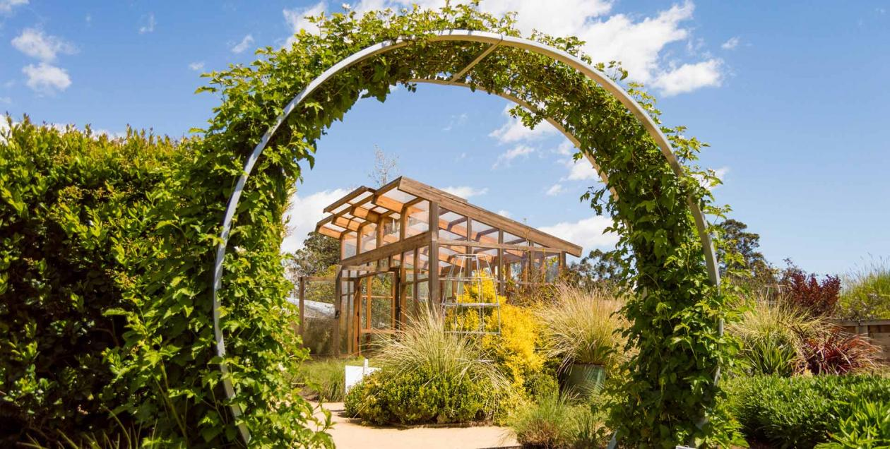 Explore the Sunset Gardens at Cornerstone Sonoma