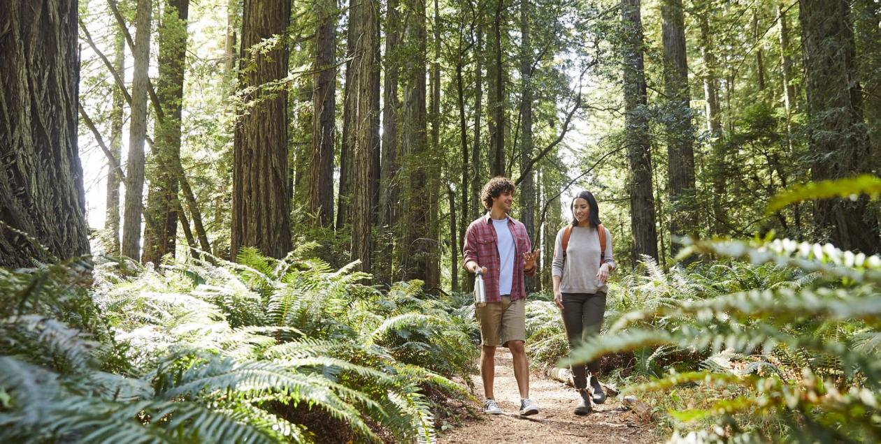 couple in redwoods