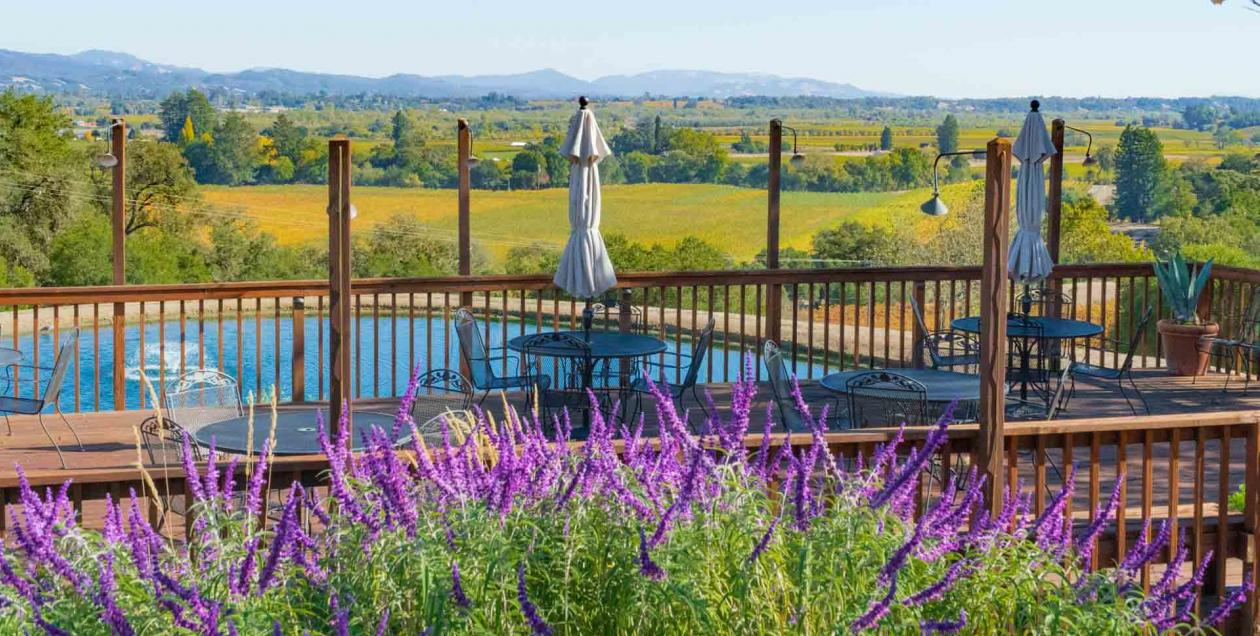 Armida Winery's breathtaking view of Dry Creek Valley in Sonoma County