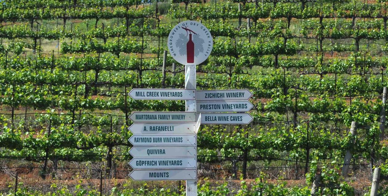 wineries sign post