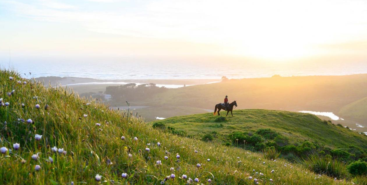 A person rides along the coast at sunset with Chanslor Stables, Bodega Bay