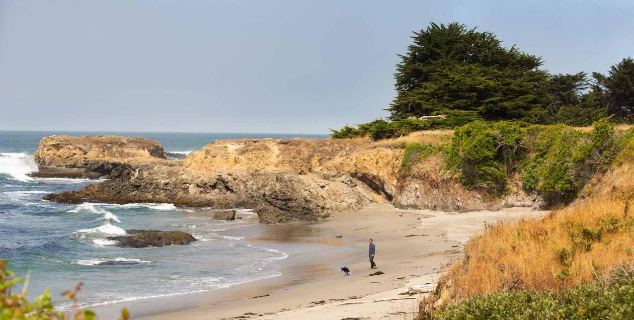 A man walks a dog along the beach in The Sea Ranch, Sonoma County