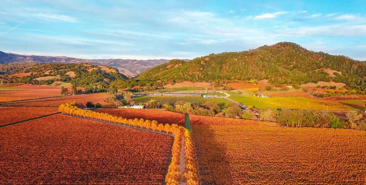 Experience Fall in Sonoma County | SonomaCounty com