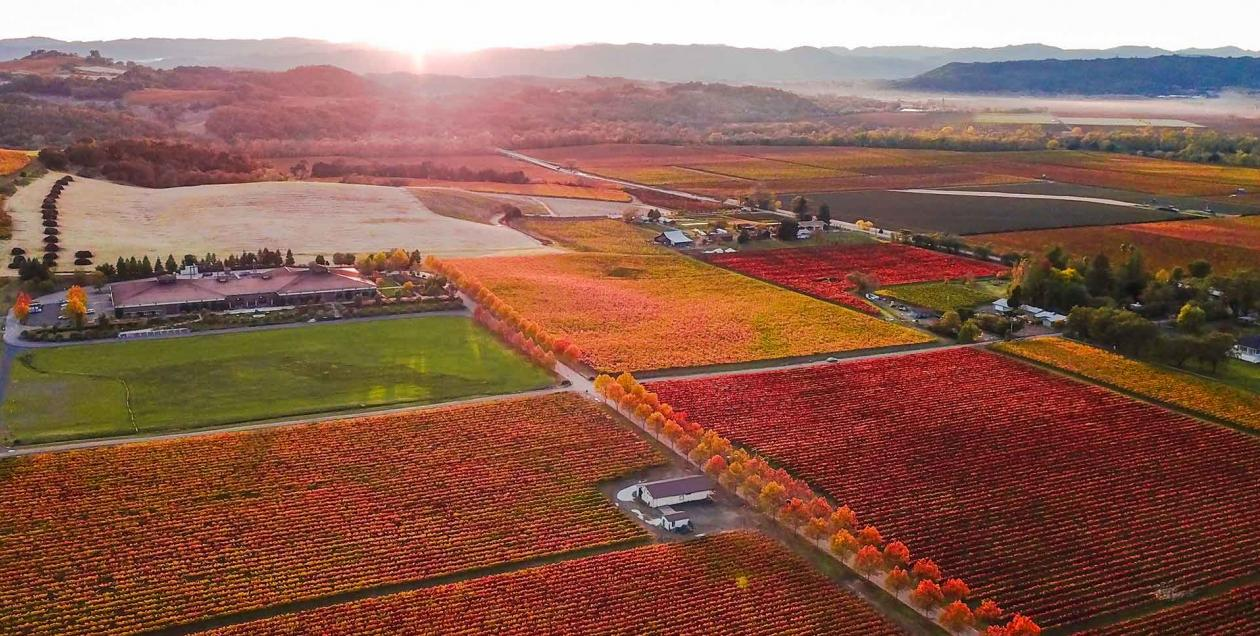 Alexander Valley aerial view in Sonoma County in Fall