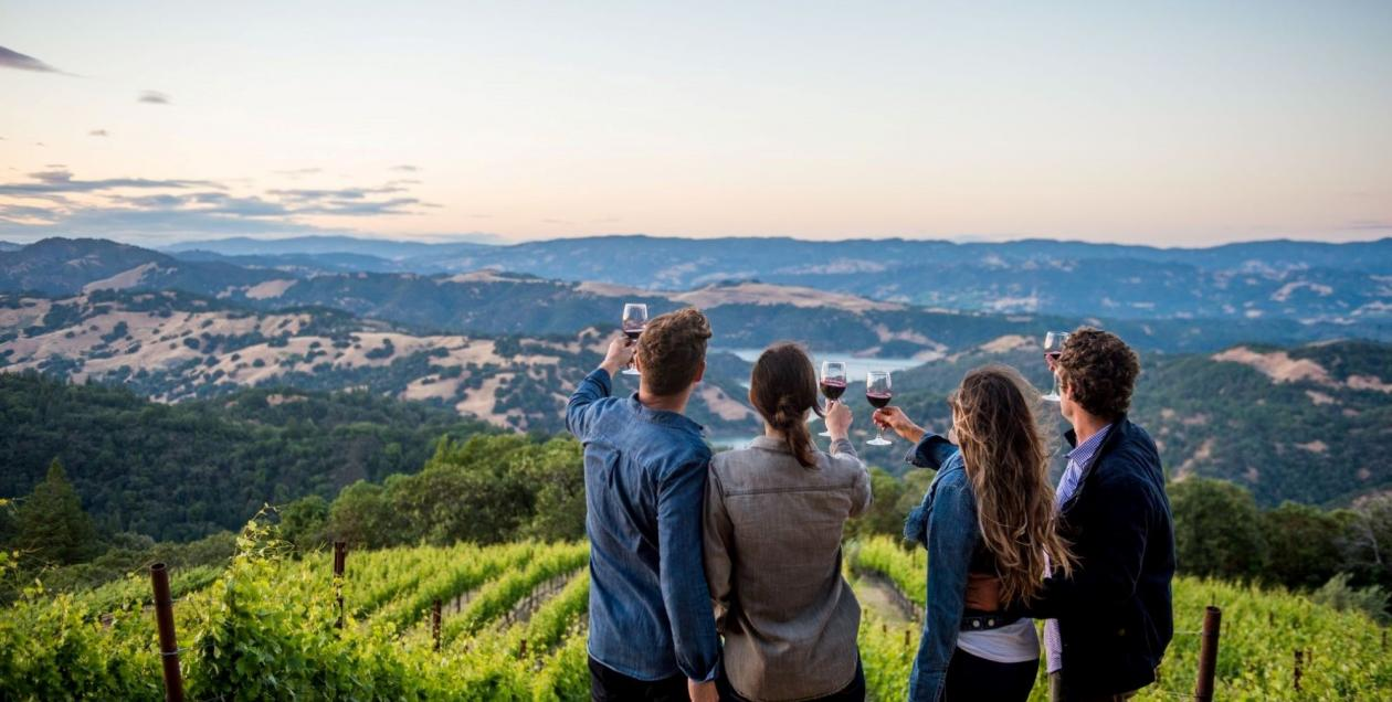 Friends toasting wine glasses while overlooking vineyards and Lake Sonoma