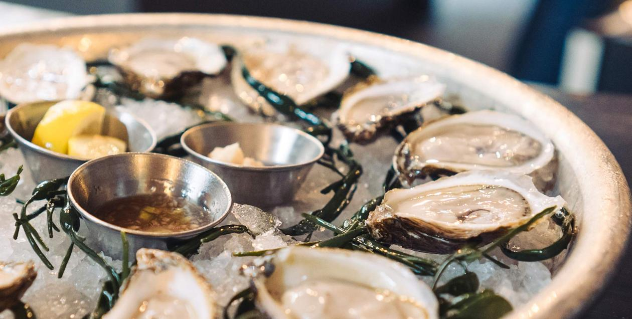 Oysters sit on a platter at The Shuckery in Petaluma