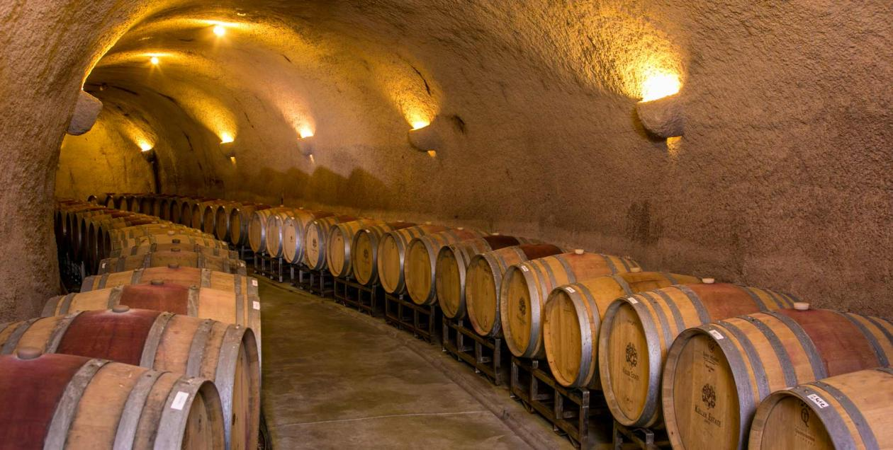 Barrels line the walls in an underground cave in Sonoma County
