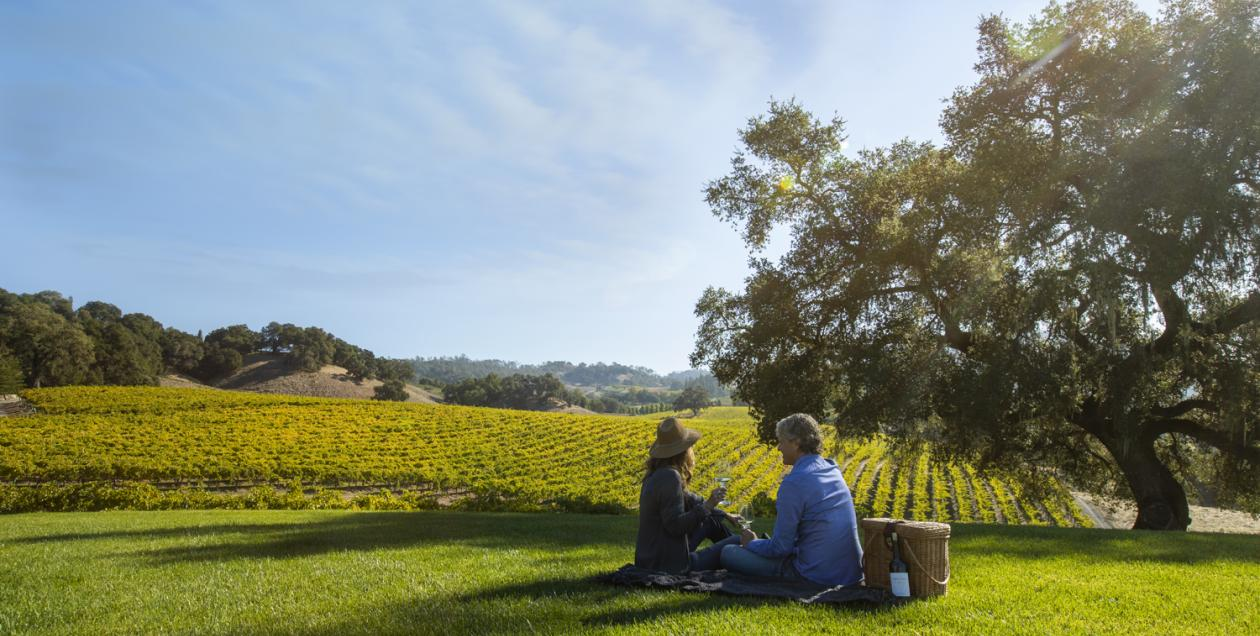 Picture of couple enjoying a picnic on the grass overlooking vineyards