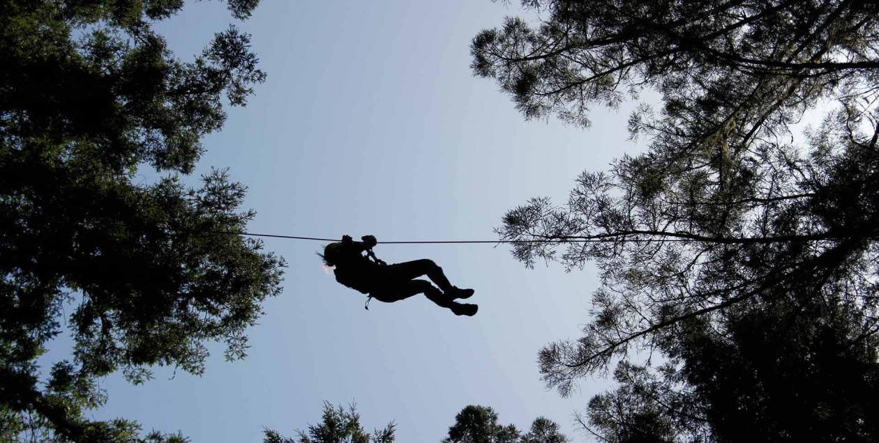 A view from below of a person ziplining