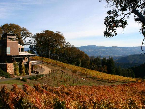 Gustafson Family Vineyards, Luxurious Estate Home in Dry Creek Valley AVA