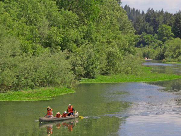Russian River family canoeing