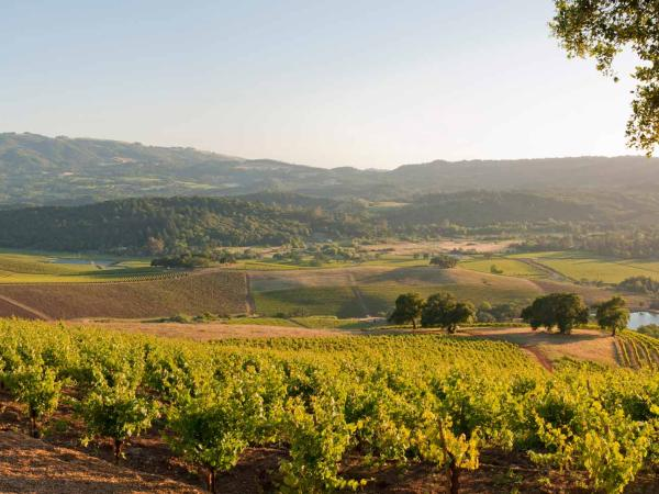 Enjoy incredible views of Sonoma Valley while tasting wines from Kunde Family Winery with their Mountain Top Tasting at 1400 feet above Sonoma Valley, Sonoma County