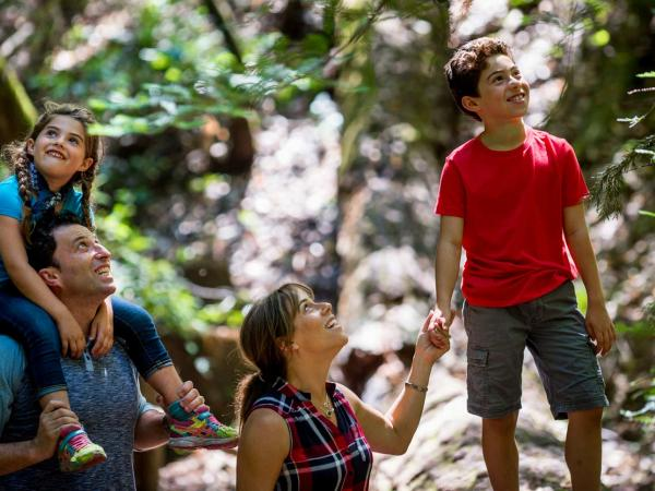 A family looks up in awe at giant redwood trees at Armstrong Redwoods State Natural Reserve, Sonoma County