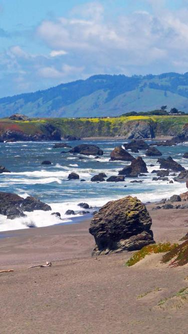 beach on the Sonoma Coast