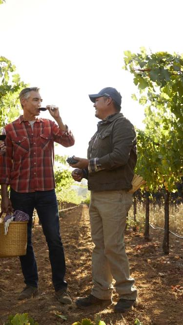 couple with farmer in Sonoma County Vineyard