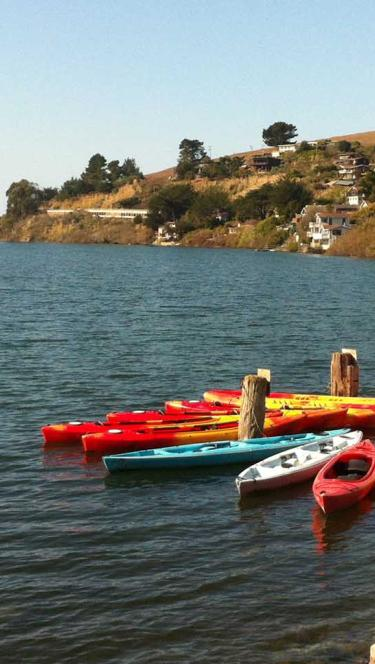 Kayaks in the coastal town Jenner