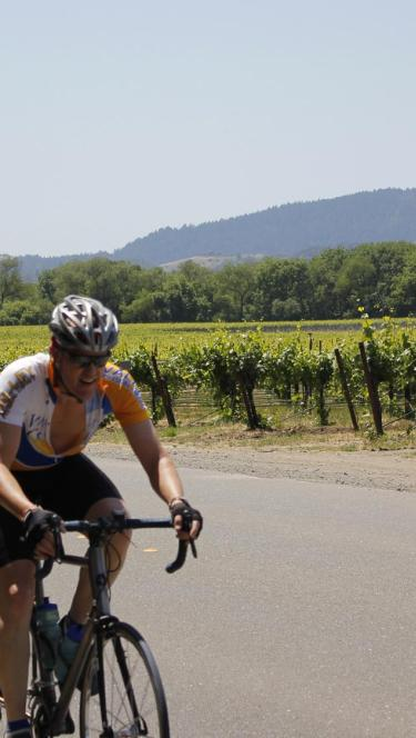 People cycle past vineyards in Sonoma County