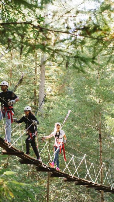 ziplining through the redwoods