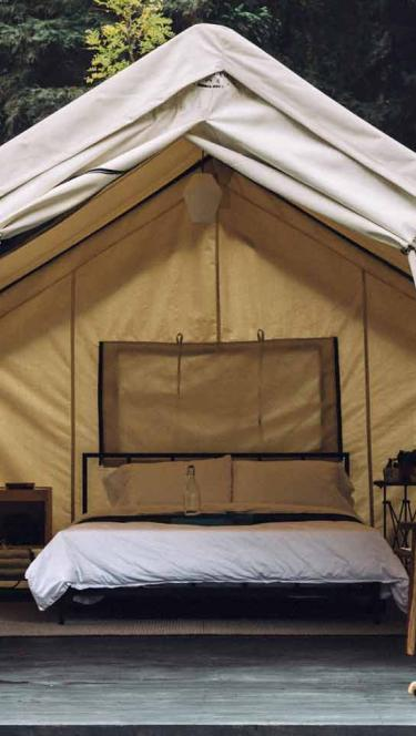 A glamping tent surrounded by redwoods