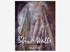 Blind Walls Book