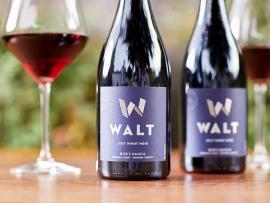 WALT Wine