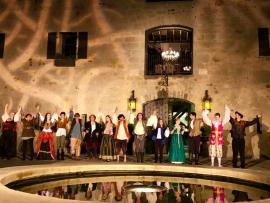 Shakespeare Under the Stars - As You Like It Photo