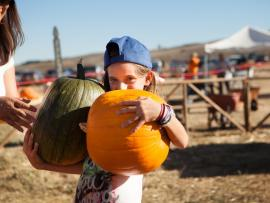 Tolay Fall Festival Photo