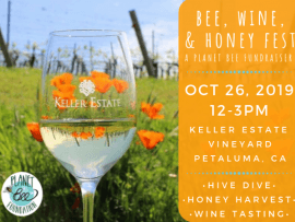 Bee, Wine, & Honey Fest - a Planet Bee Fundraiser Photo