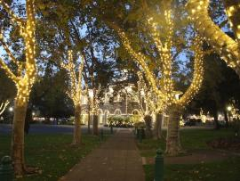 Lighting of the Sonoma Plaza Photo