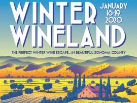 Winter Wineland Photo