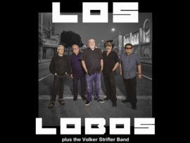Los Lobos + Volker Strifler Band Photo