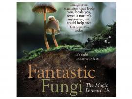 SIFF | Screen & Cuisine: Fantastic Fungi Photo