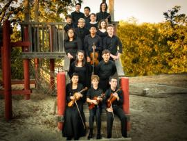 Young People's Chamber Orchestra Photo