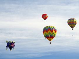 Sonoma County Hot Air Balloon Classic - canceled Photo