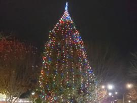 Sebastopol Tree Lighting & Holiday Celebration Photo