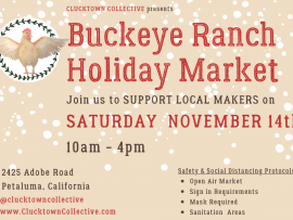 Clucktown Collective Presents: Buckeye Ranch Holiday Market Photo