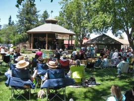 Cotati Music Festival Photo