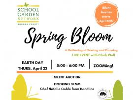 Virtual Event: Spring Bloom Photo