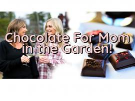 Chocolate for Mom in the Garden - Mother's Day Weekend Photo