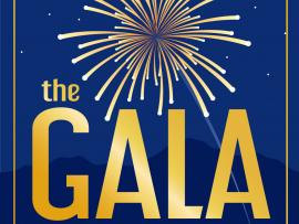 Transcendence's Broadway Under The Stars - The Gala Photo