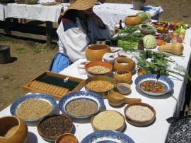 Fort Ross Harvest Festival Photo