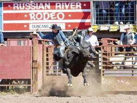 Russian River Rodeo Photo