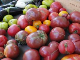 Heirloom tomatoes at the Healdsburg Farmers Market