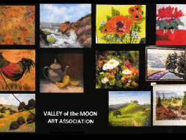 Valley of the Moon Art Association