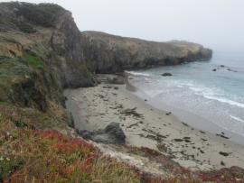 Black Point Coastal Access Trail in The Sea Ranch