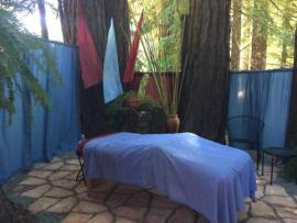 Massage in the Redwoods