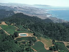 High Above Fort Ross Vineyard & Winery