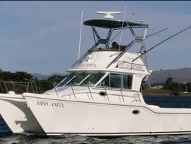 Miss Anita Fishing Charters
