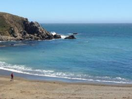 Sandy Cove Beach at Fort Ross State Historic Park
