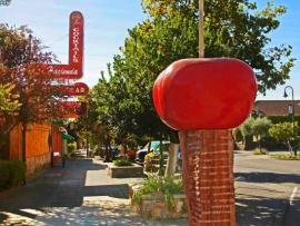 The Big Red Candy Apple by M.C. Carolyn in Cloverdale